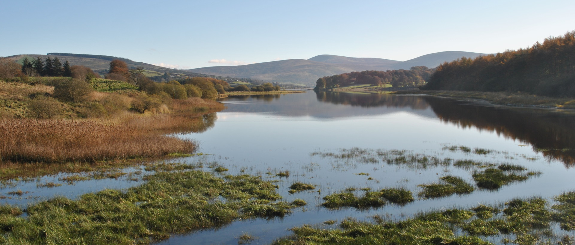 Blessington lakes County Wicklow
